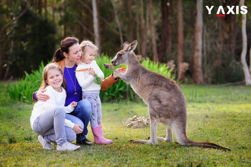 australia dependant visa