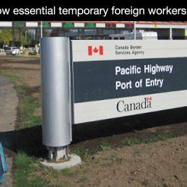 Canada temporary work visa